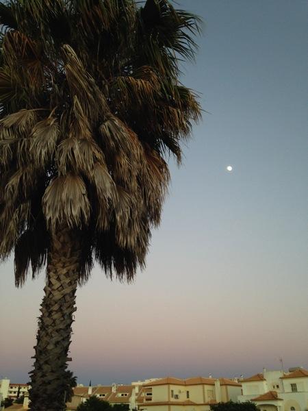 I See A Full Moon Rising